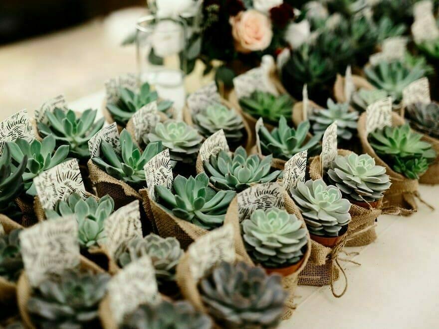 20 bodas divertidas y significativas que tus invitados realmente usarán